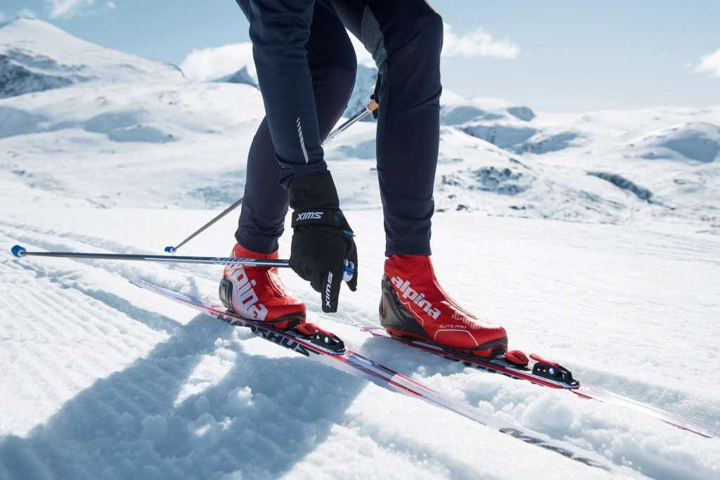 Buty Alpina do narty biegowych