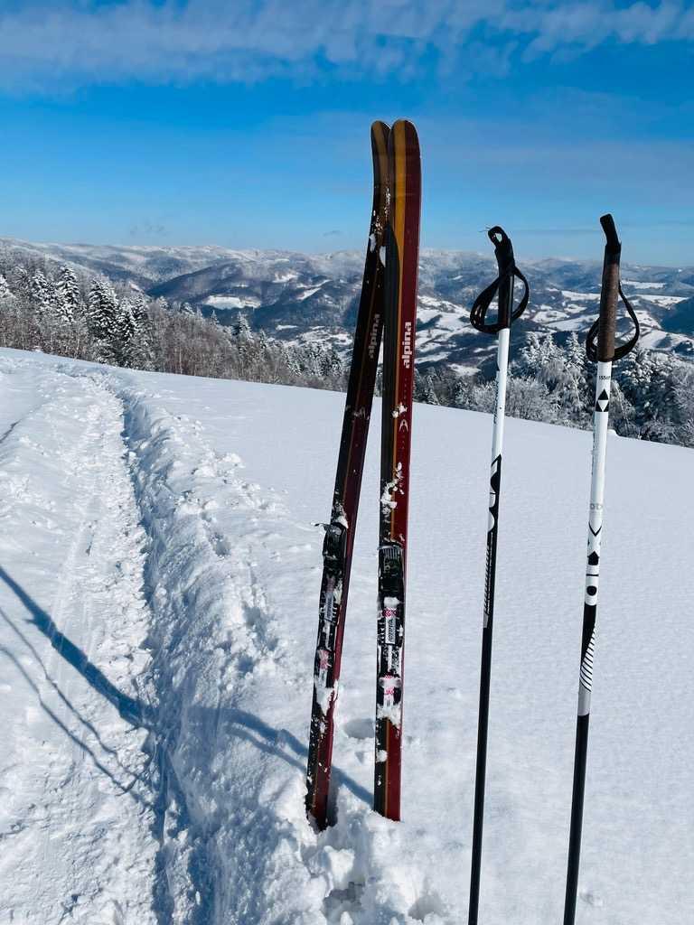 Narty backcountry Alpina